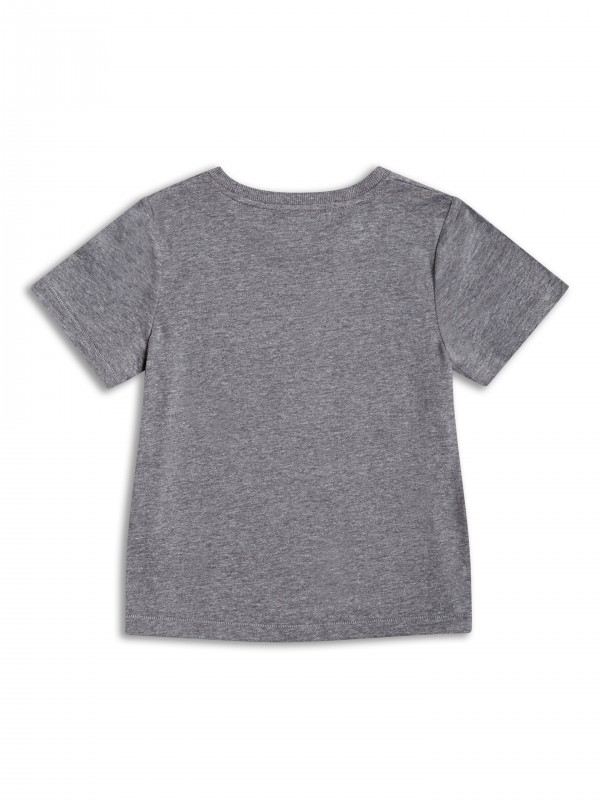 T-shirt firmy Riot Club, kolor Grey